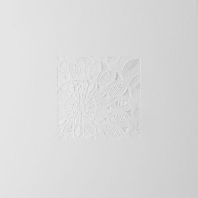 The White Series #005